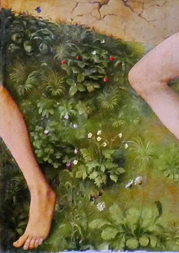 Panneau 2 : Violette odorante, Fraisier des bois, Renoncule, Pâquerette. Photographie lavieb-aile.