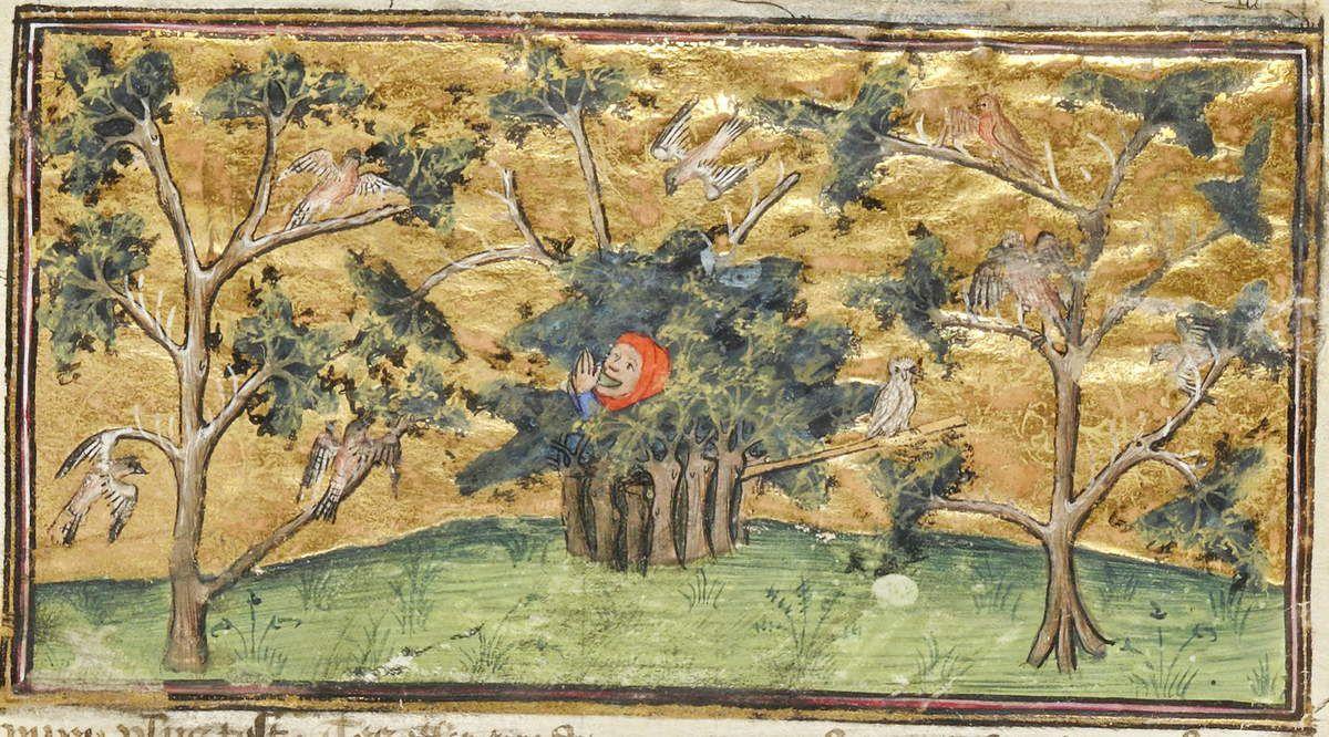 Chasse à la pipée  avec une chouette mise en appât, Livre des déduits du Roy Modus et la royne ratio, Bnf fr. 1297 folio 93r , Gallica.