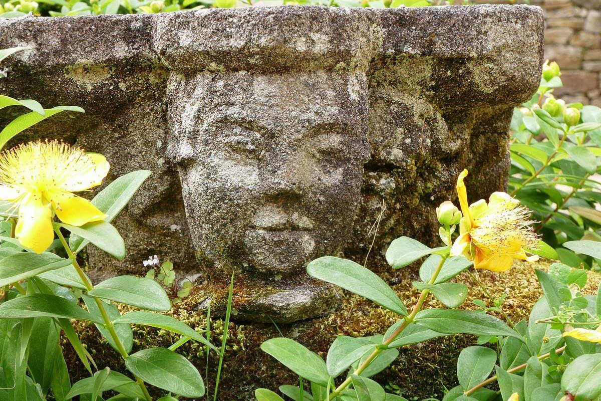 Tête parmi les fleurs de millepertuis,  kersanton, cloitre de l'abbaye de Daoulas. Photographie lavieb-aile juin 2017.
