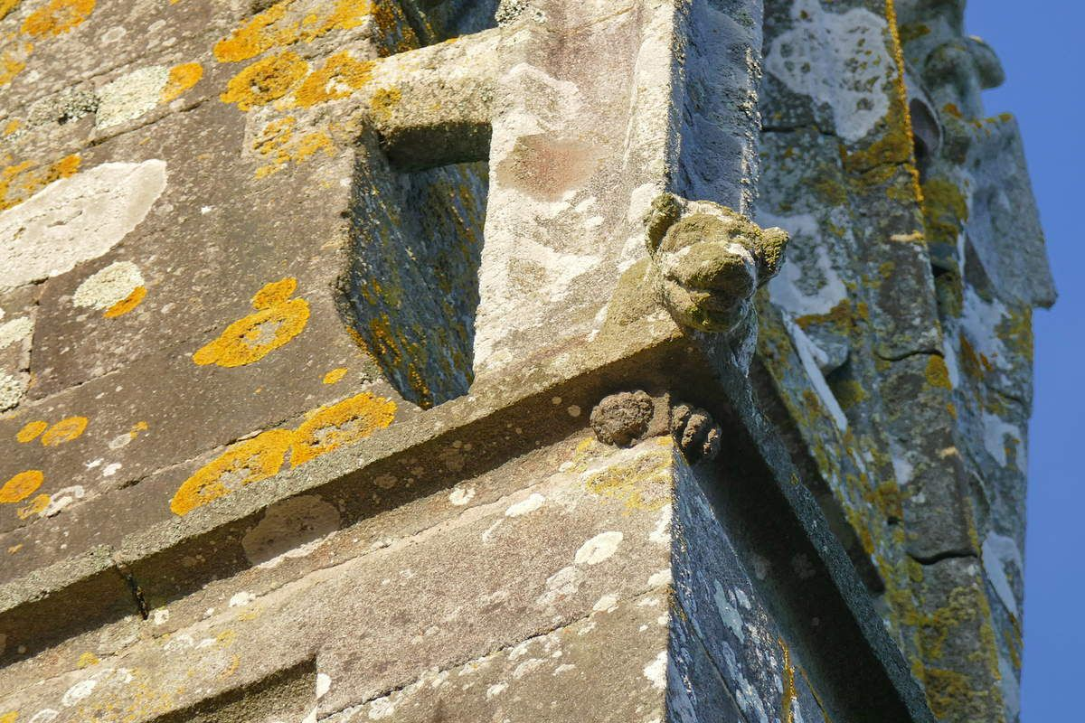 Crossette de la galerie supérieure du  clocher de l'église Notre-Dame-de-Bonne-Nouvelle à l'Hôpital-Camfrout. Photographie lavieb-aile février 2017.