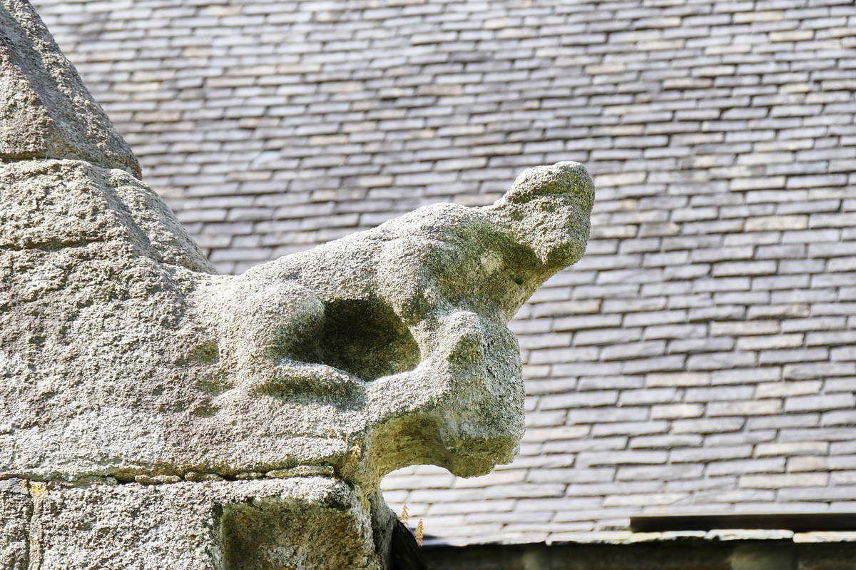 Crossette de l'Animal tenant un objet,  rampant du bras sud de la chapelle Notre-Dame-de-Berven, Plouzévédé. Photographie lavieb-aile juillet 2017.