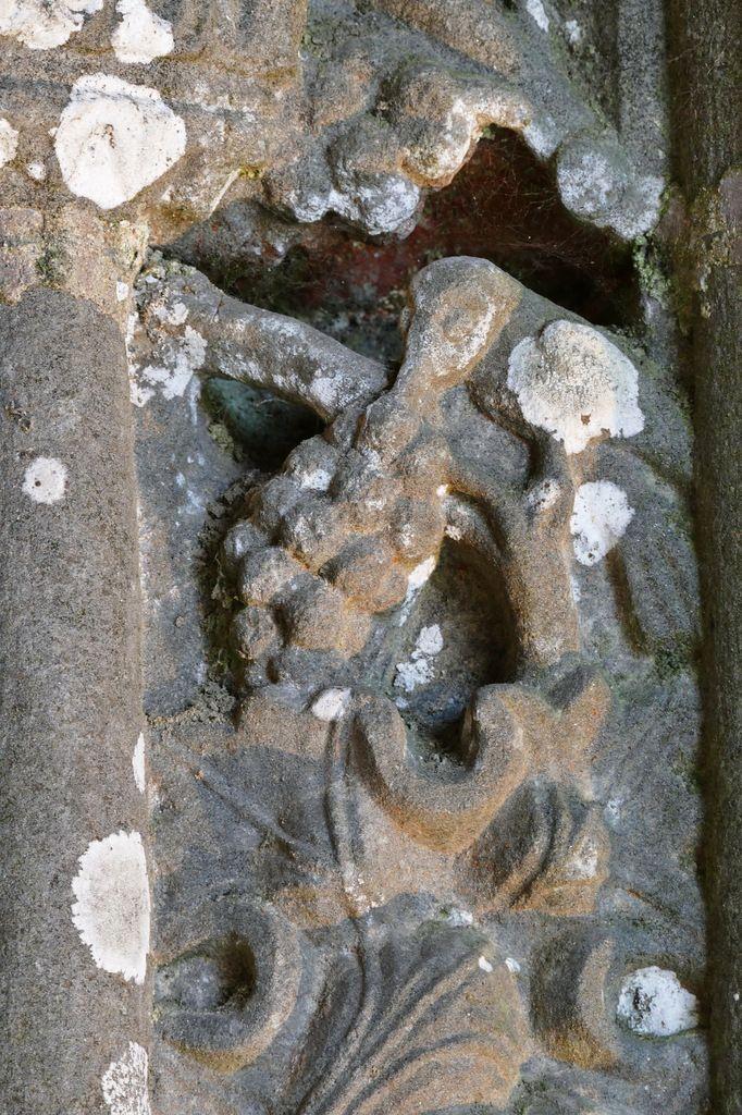 Oiseau picorant les raisins,  (kersanton, 1570),  gorge interne du portail intérieur du porche sud de l'église de Bodilis. Photographie lavieb-aile mai 2018.