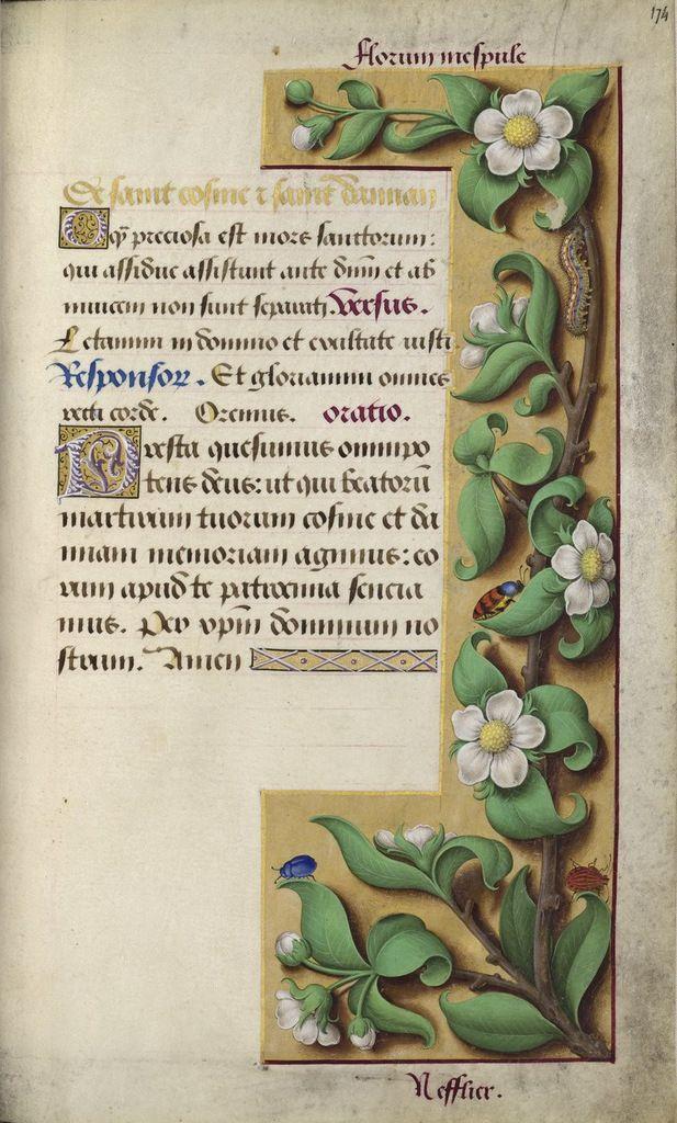 Grandes Heures d'Anne de Bretagne f. 174r, De saint Côme et saint Damien. BnF Gallica.