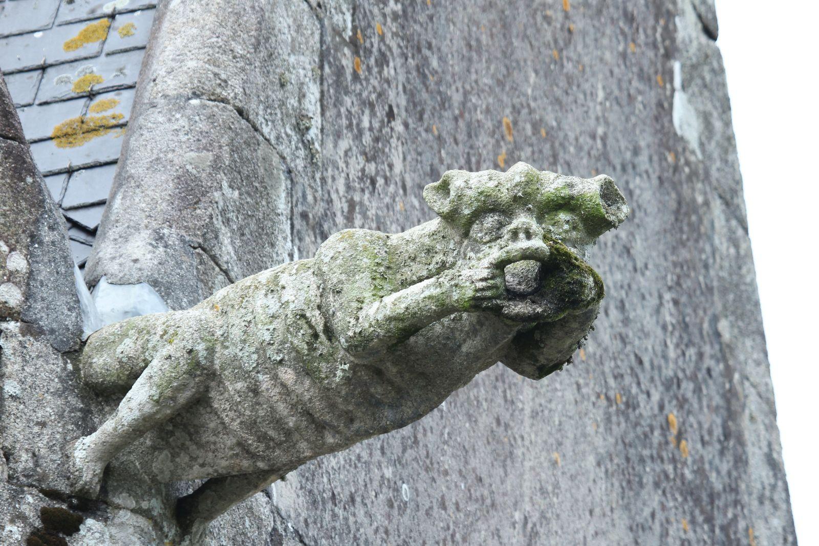 Gargouilles de la chapelle Sainte-Anne-la-Palud. Photographie lavieb-aile juin 2020.