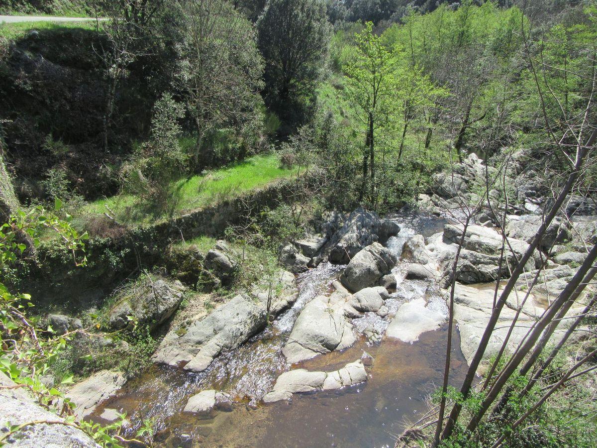 Forêt méditerranéenne ... rivières attirantes ... c'est presque l'été !