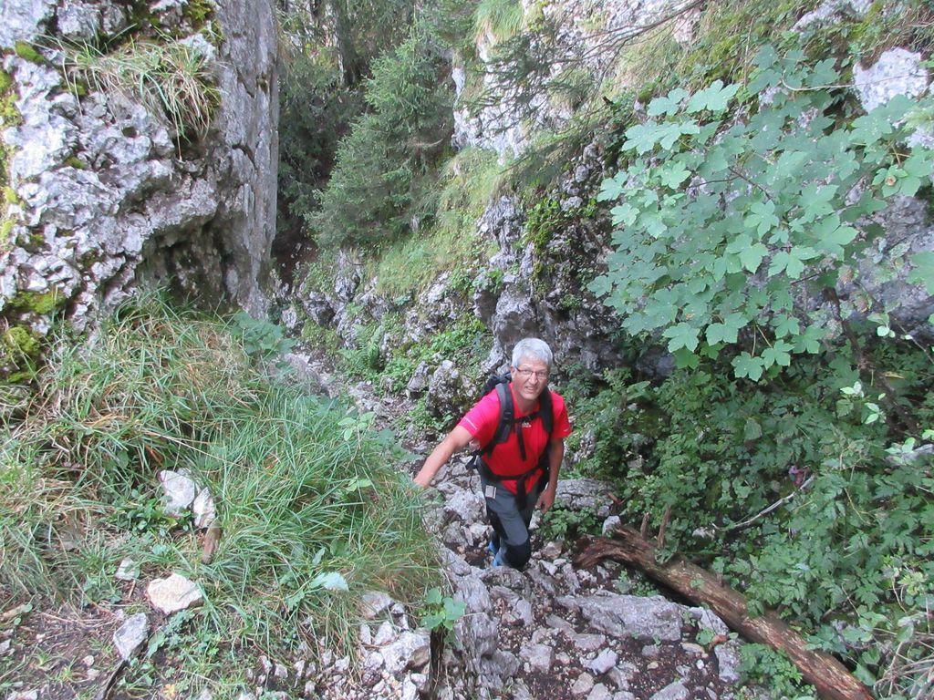 Le pas de la Bergère, une faille en sous-bois