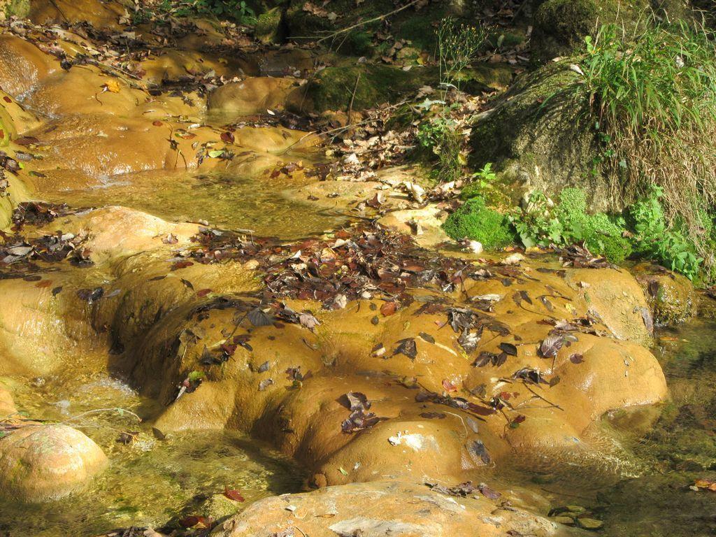 L'eau du ruisseau ... puis l'eau de la Bourne ...