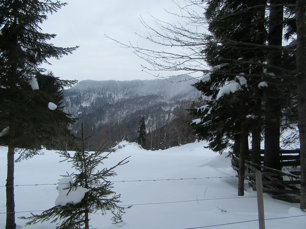 Snow-vénie à skis de fond : Terminus aux Thermes de Snovik