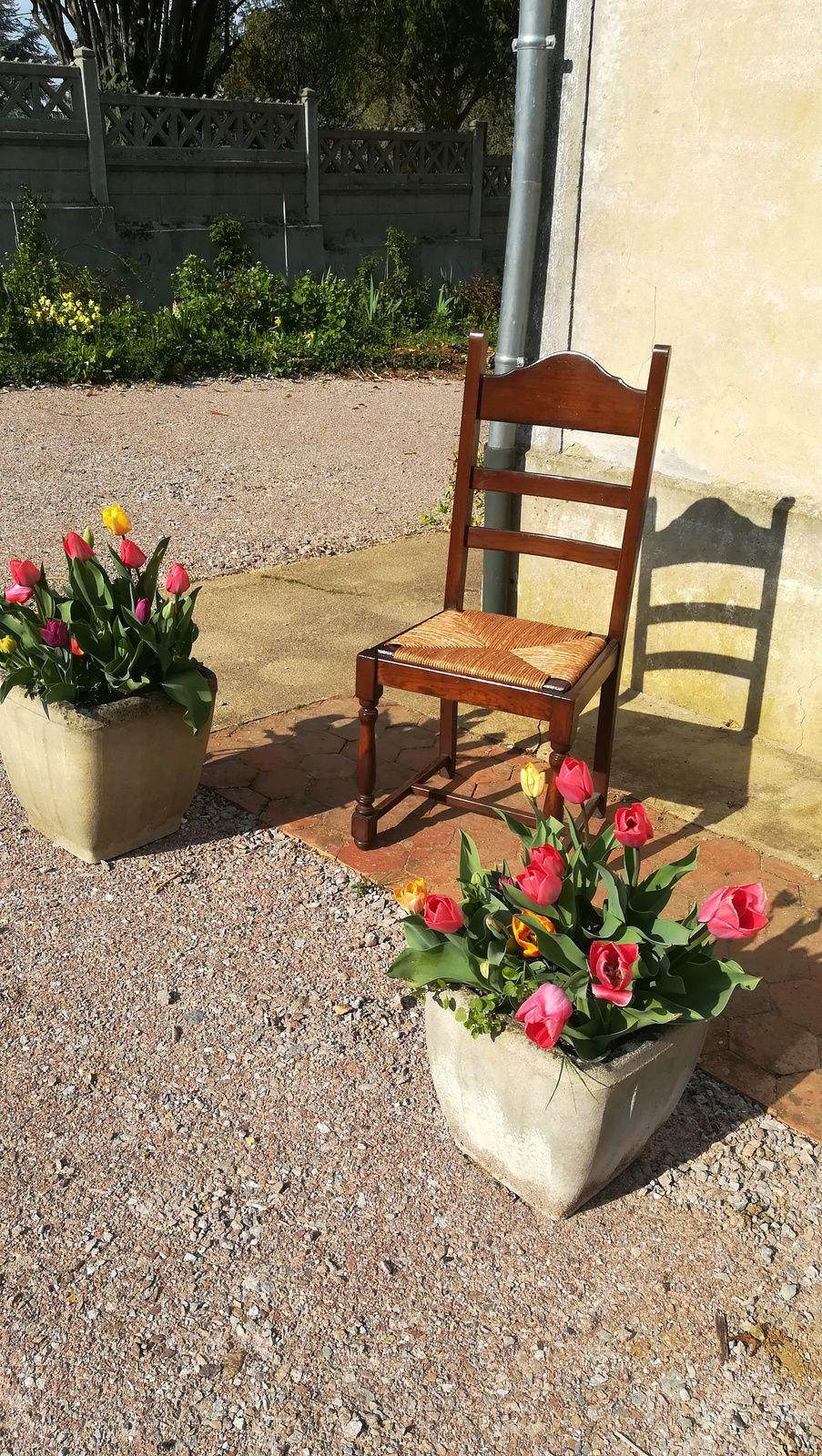 sièges cannés ou paillés chez JADIS à Clamecy 58 (Nièvre)