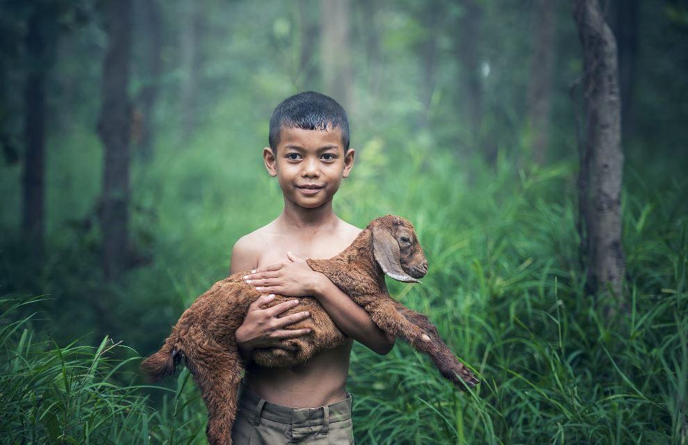 chevreauet enfant (Asie) © Sasin Tipchai