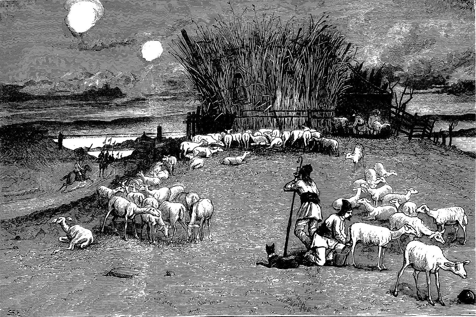 Peace and War - A shepherd_s hut near the Camp within the range of Turkish shells 1877