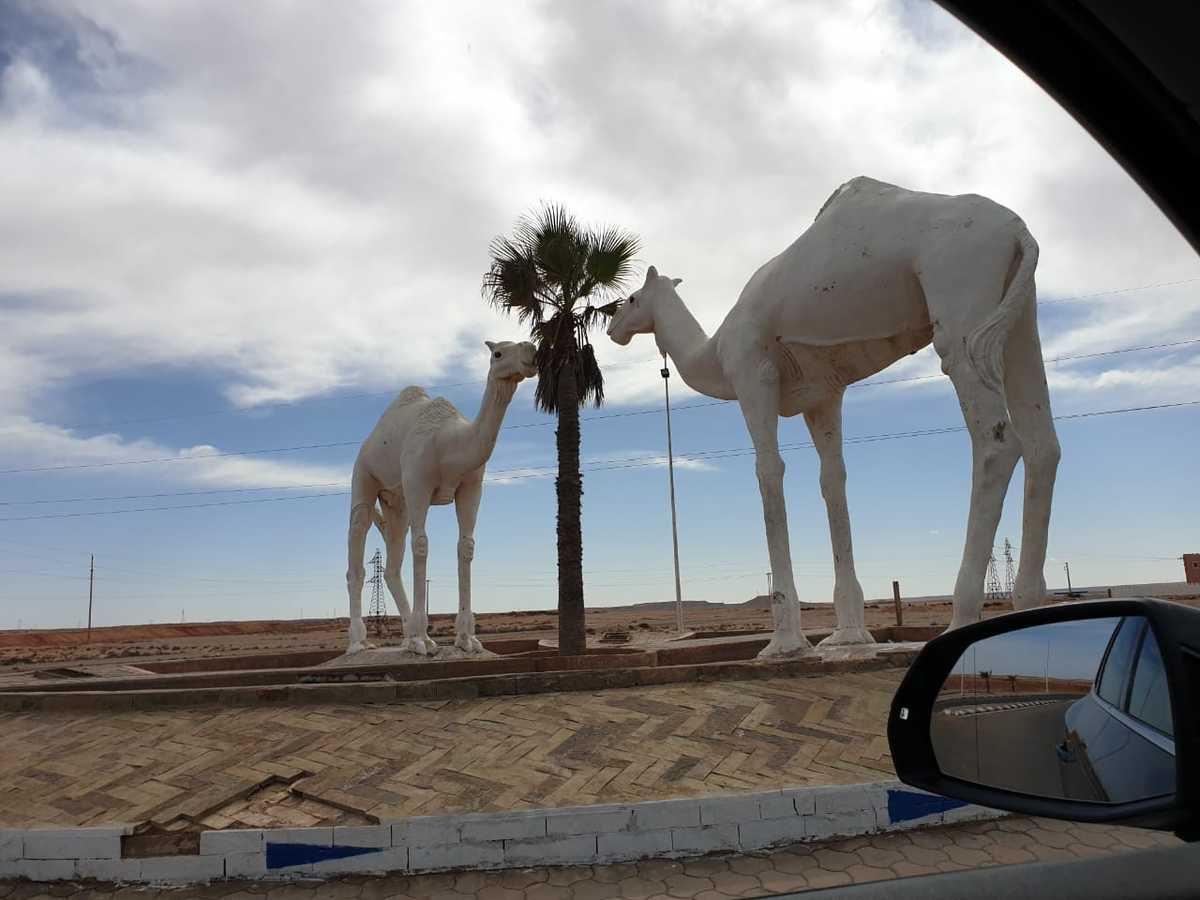 Roadtrip dans le sud Marocain