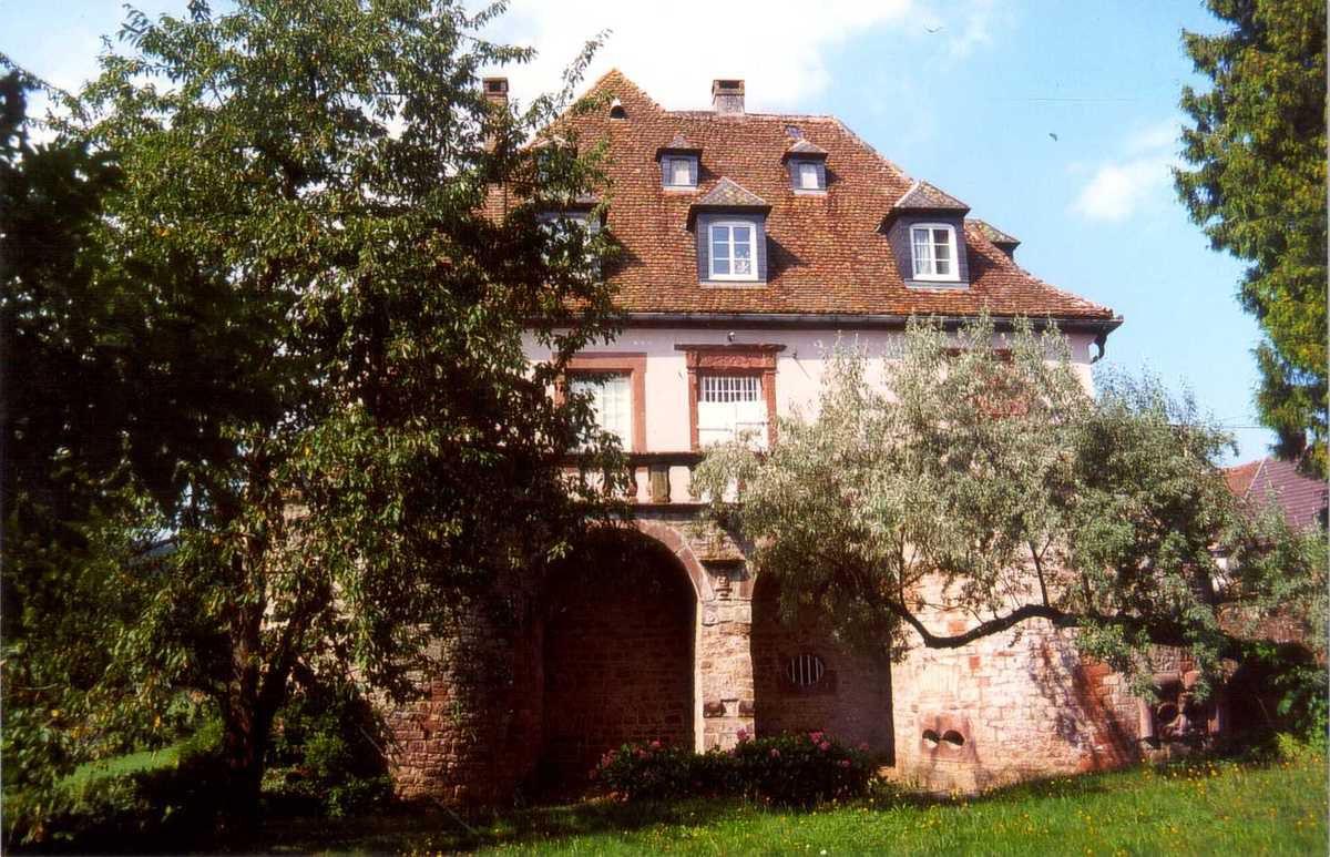TRESORS DU PATRIMOINE FRANCAIS : LE CHATEAU DE BIRKENWALD  (BAS-RHIN)