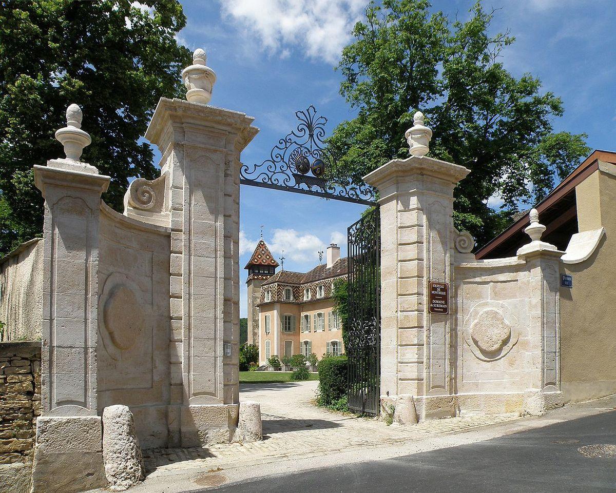TRESORS DU PATRIMOINE FRANCAIS : MONTHELIE  (COTE D'OR) - LE CHATEAU
