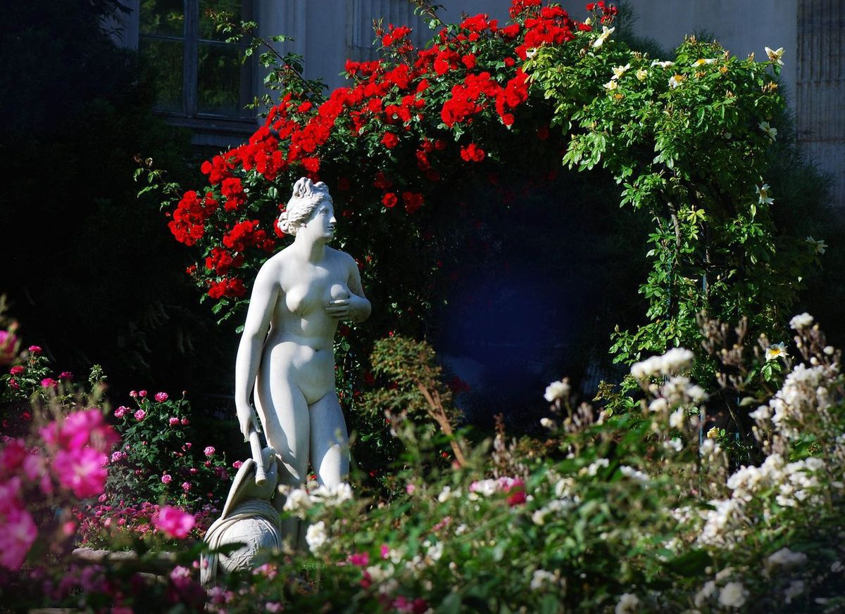 TRESORS DU PATRIMOINE FRANCAIS : PARIS - LE JARDIN DES PLANTES . LA ROSERAIE