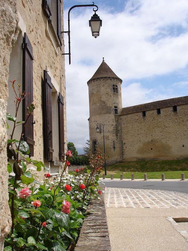 TRESORS DU PATRIMOINE FRANCAIS : BLANDY-LES-TOURS  (SEINE-ET-MARNE) - LE CHATEAU