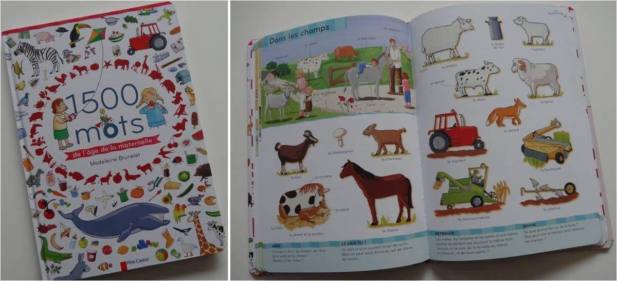 Ce livre est très chouette avec les petits jeux du bas où il faut retrouver des objets dans l'image, mimer le cri des animaux, raconter...(reçu en service de presse)