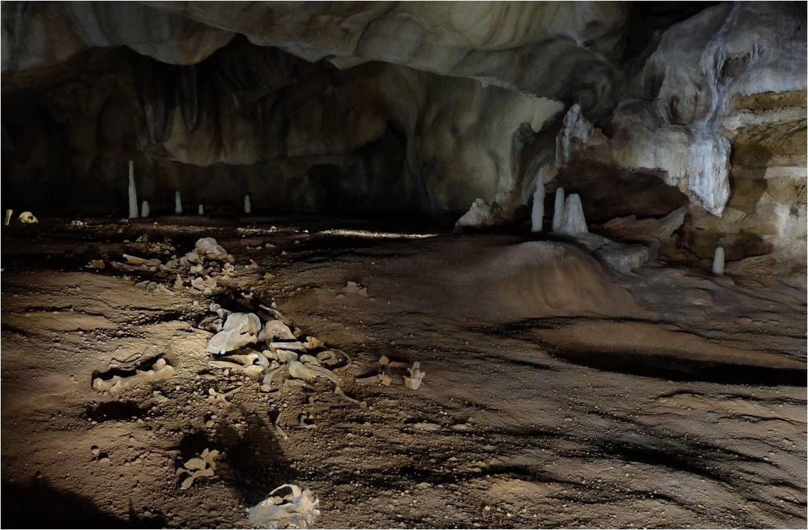 La rivière d'ossements d'ours, les creux où dormaient les ours, tout a été reproduit !