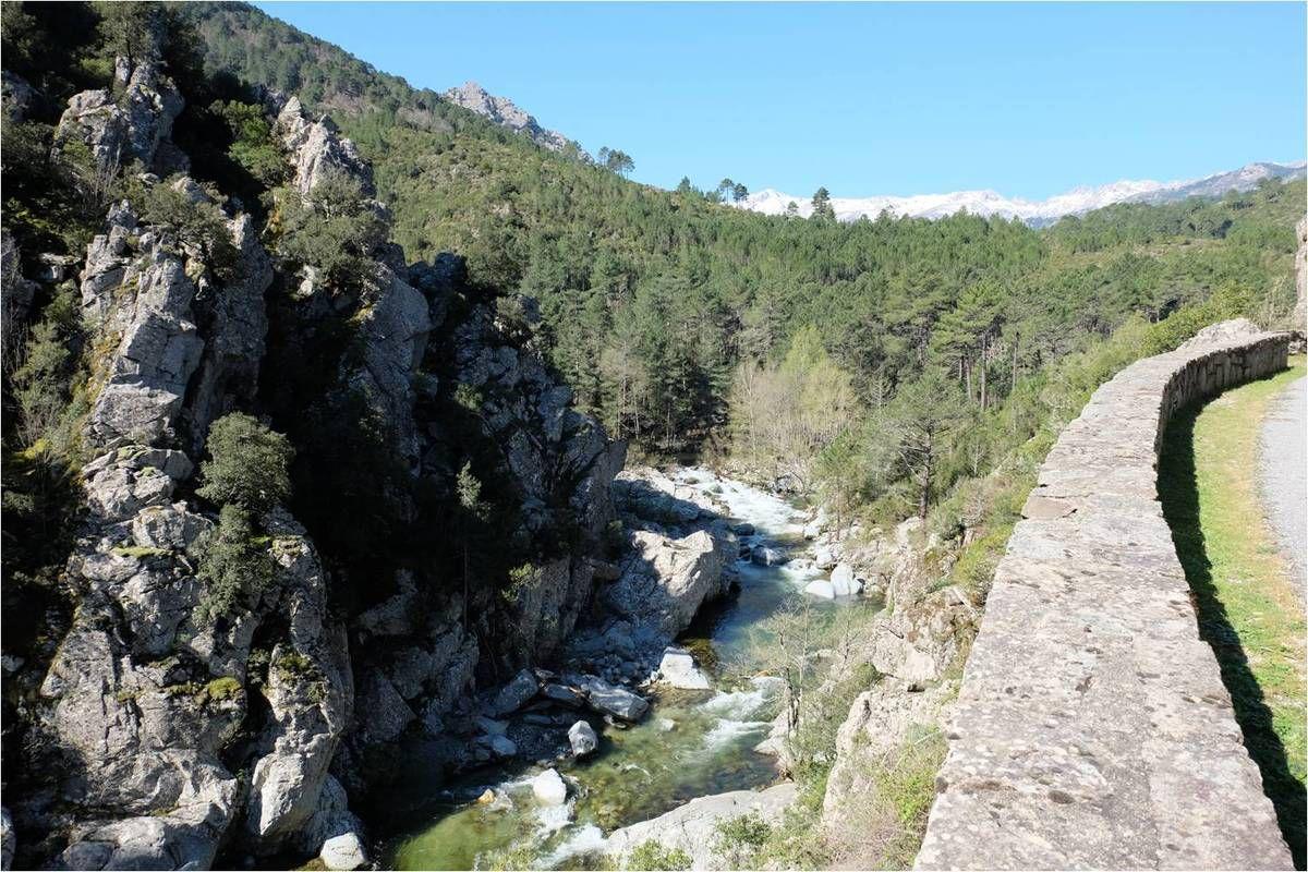 Séjour en Corse : la bonne surprise de la côte Est !