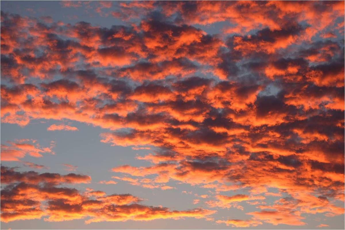 Un jour, ton horizon de parent se dégage, et si tous les nuages ne se dissipent pas, ils deviennent roses et bien plus jolis...