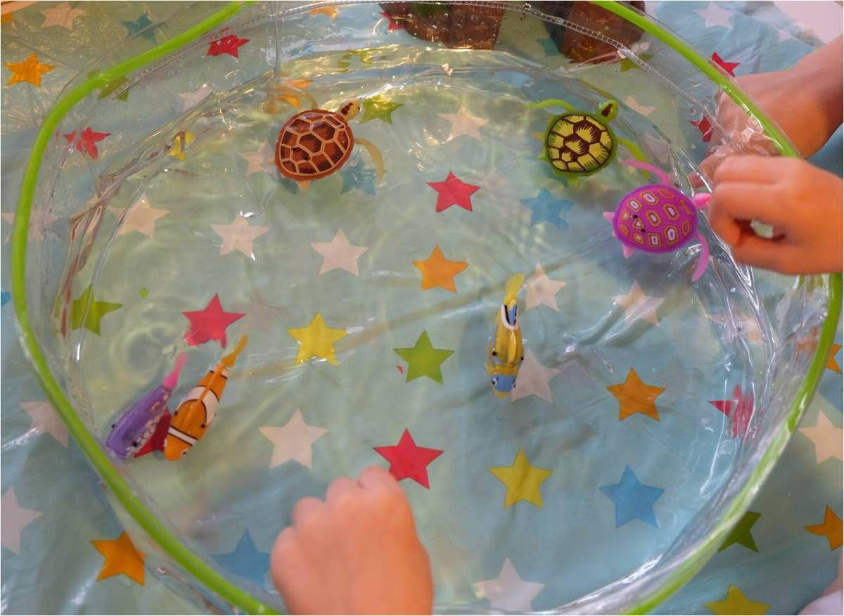 Après les Robo Fish, les Robo Turtle !
