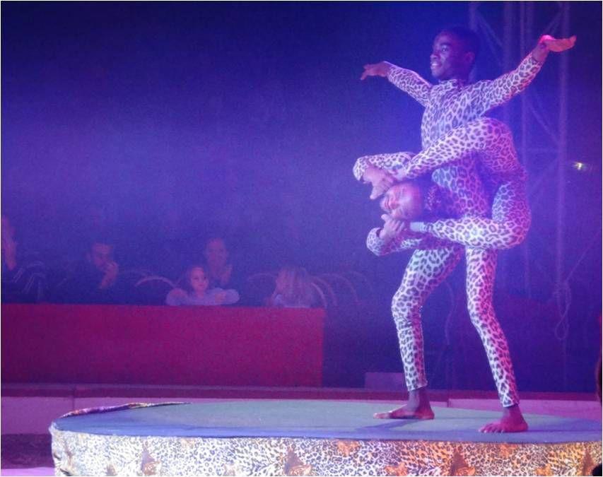 King Kong, l'étonnant nouveau spectacle du cirque Medrano 🎪
