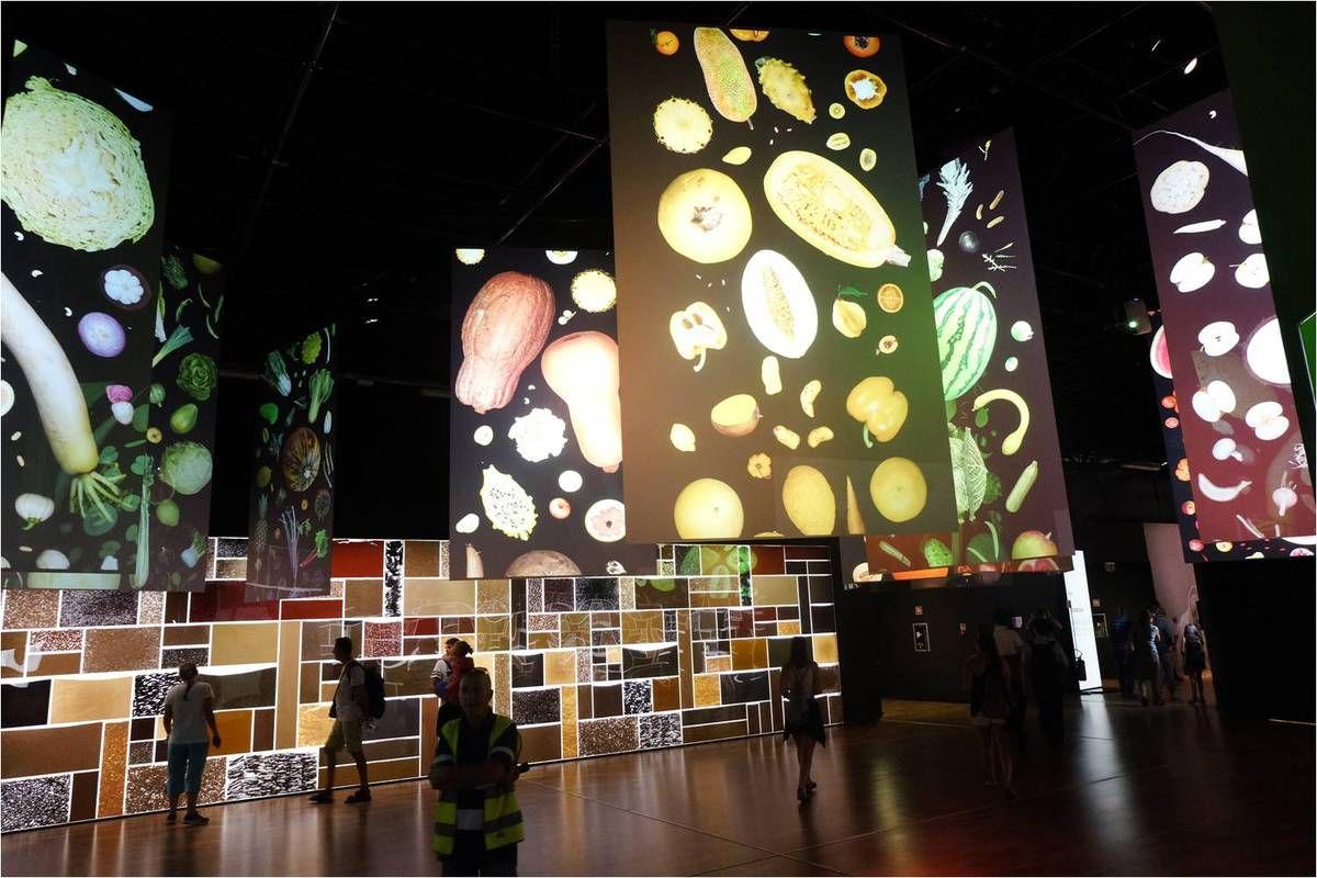Top 5 des Pavillons à l'Expo Universelle de Milan