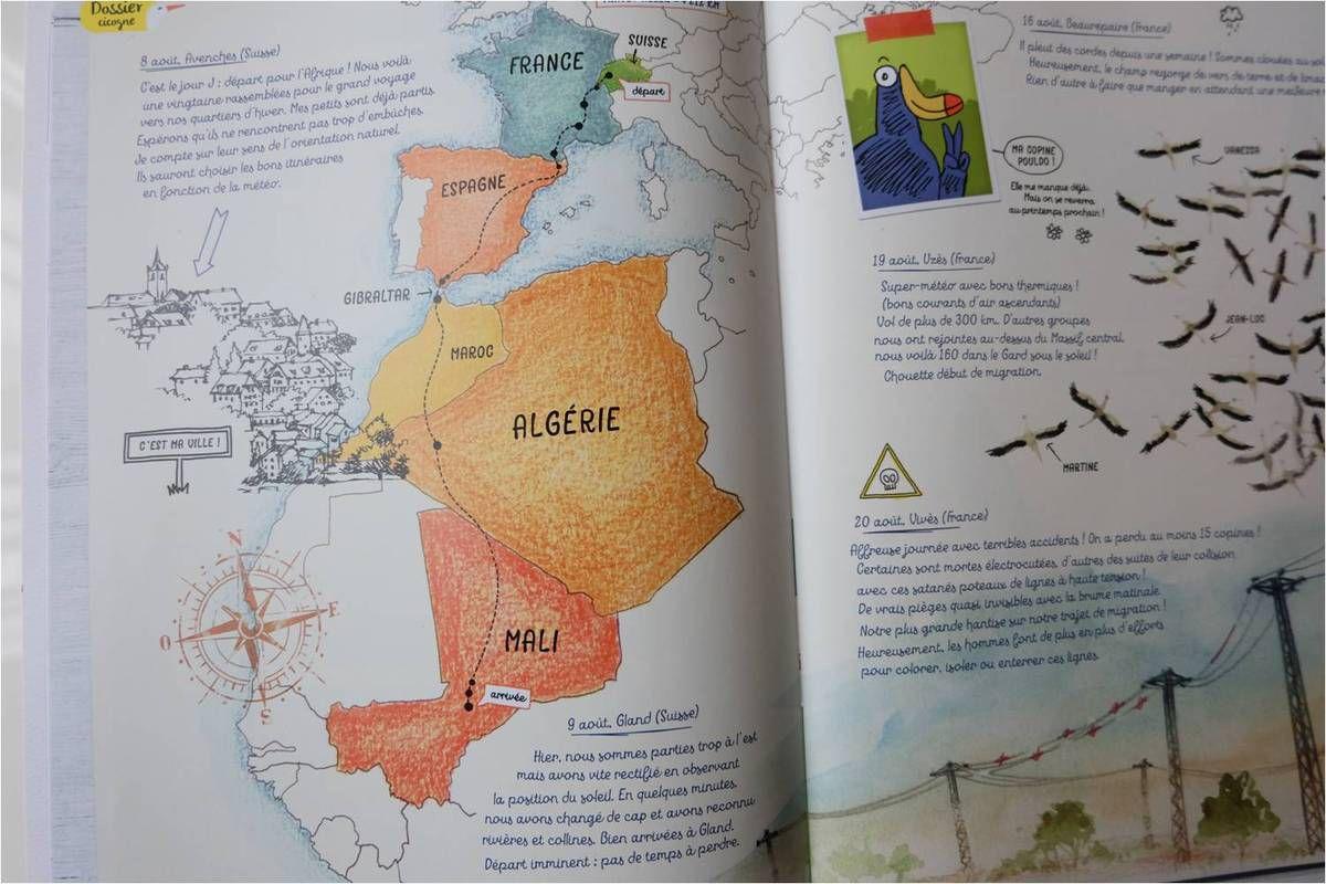 Le documentaire : le carnet de route migratoire de la cigogne est top !