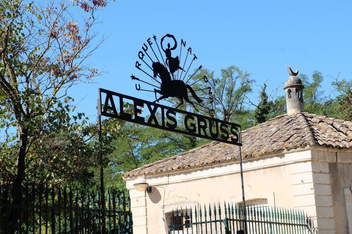 Parc Alexis Gruss : une journée au cirque !