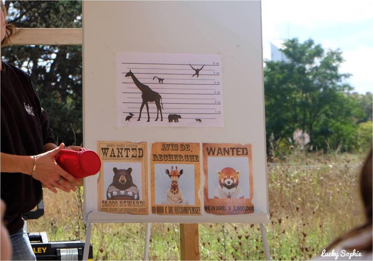 P'tits détectives au zoo de Lyon
