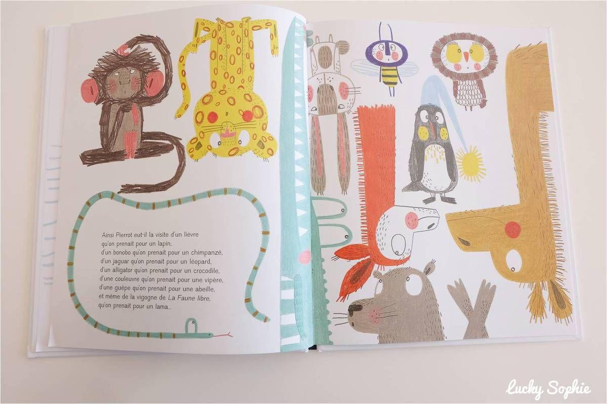 10 super livres d'animaux #3