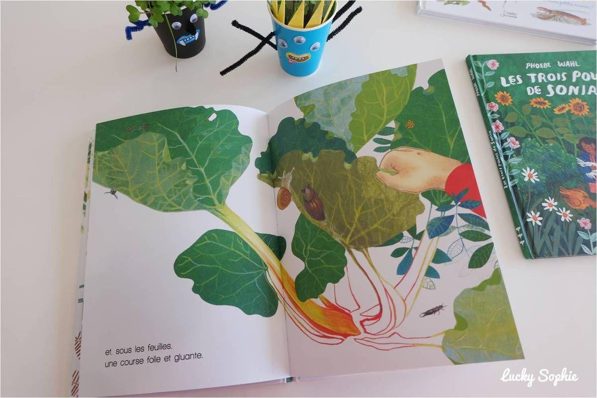 Livres enfants pour sortir dans la nature !