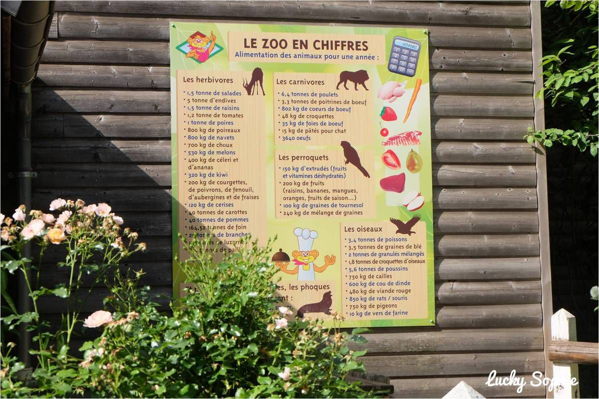 Le Pal en famille, parc animalier et d'attractions !