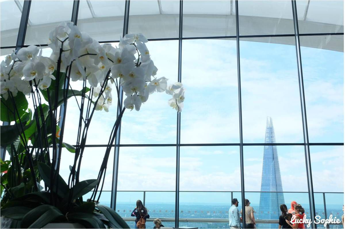 Sky Garden, jardin perché avec vue gratuite sur Londres !