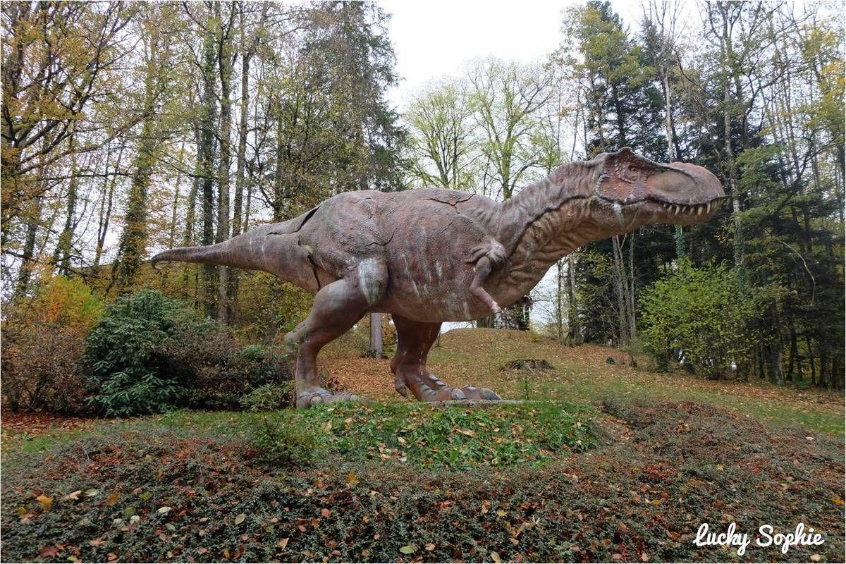 Sortie en famille au parc Dino Zoo