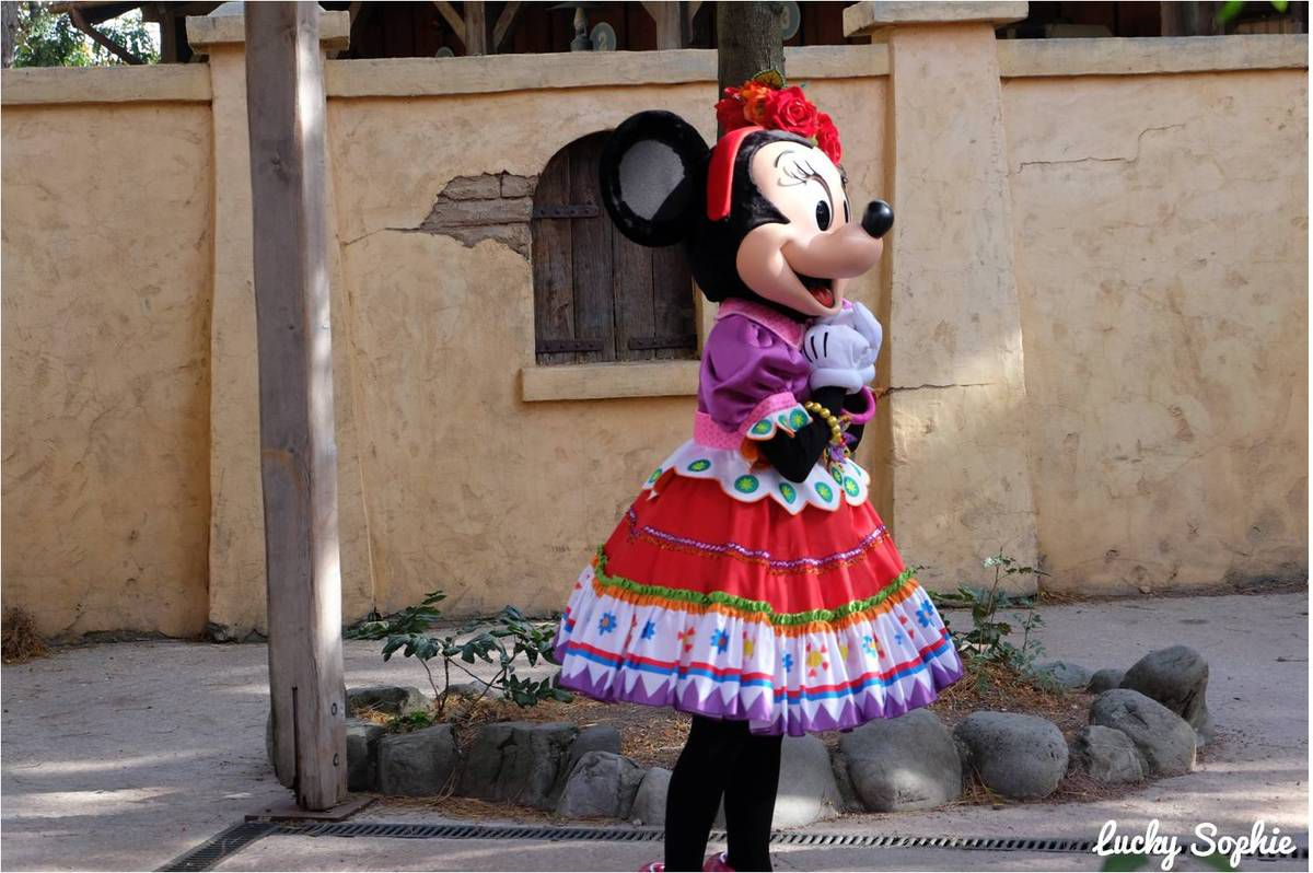 Quand Minnie se met aux couleurs de Coco, on adore !