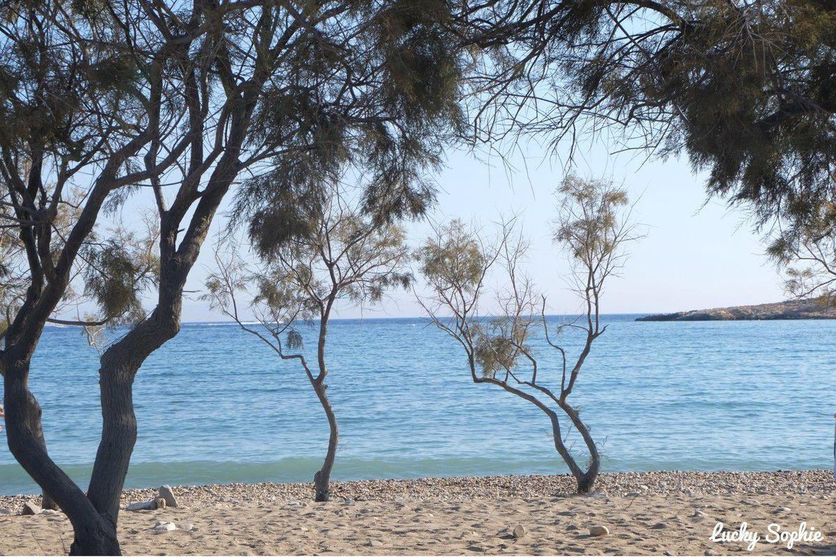 La petite plage de Glyfa, sans prétention mais assez tranquille et bien agréable.