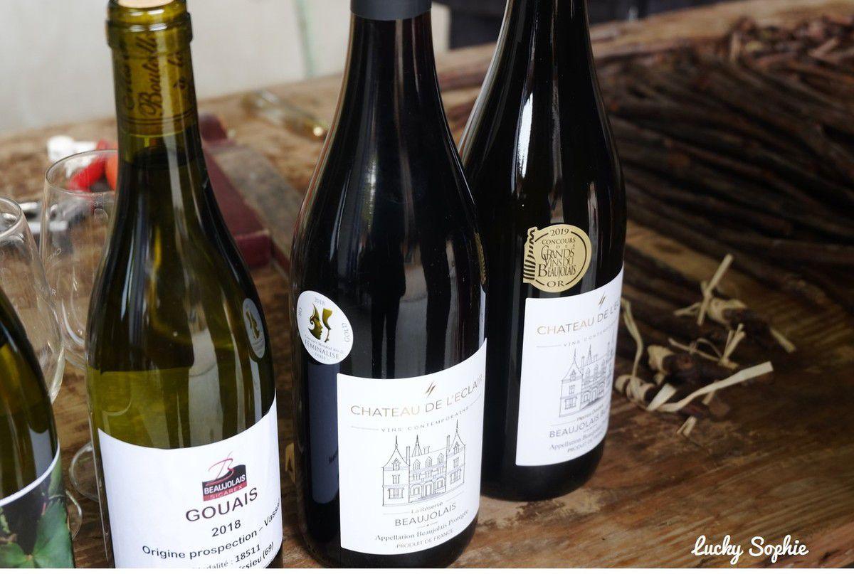 Cluedo géant dans les vignes au Château de l'éclair