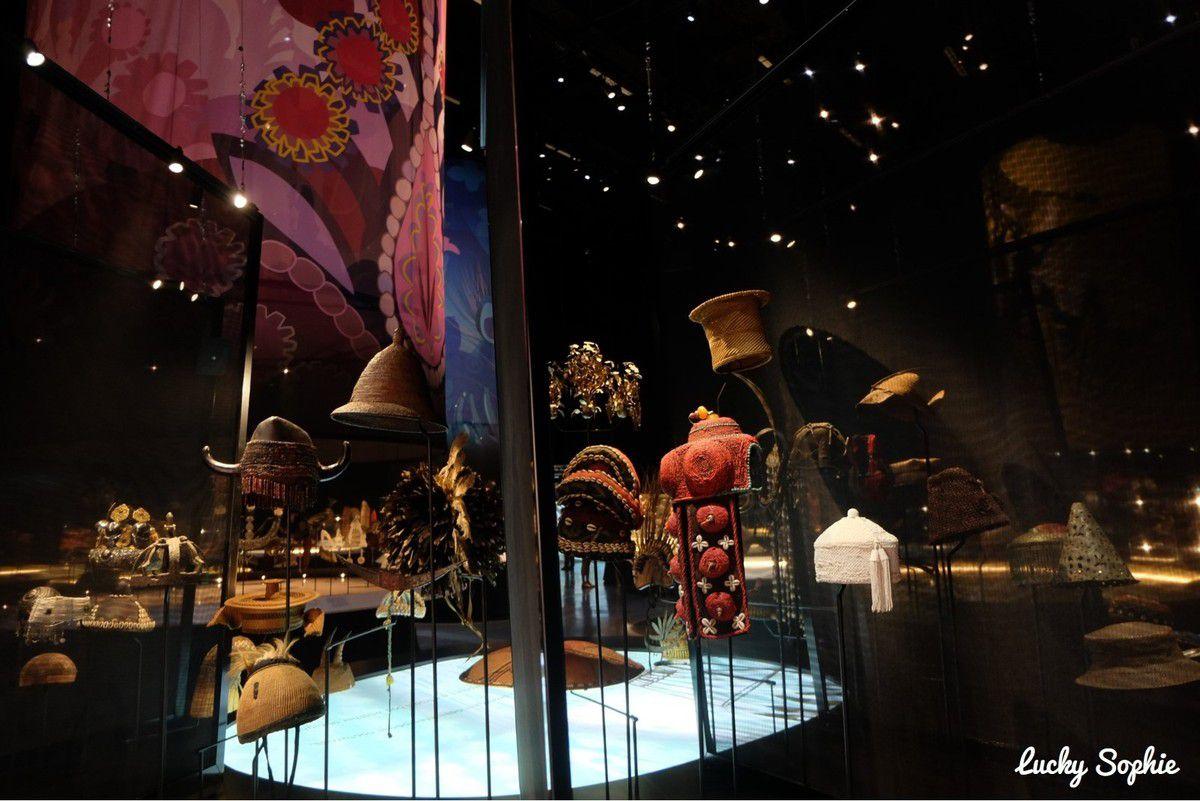 Expos de l'été au Musée des Confluences