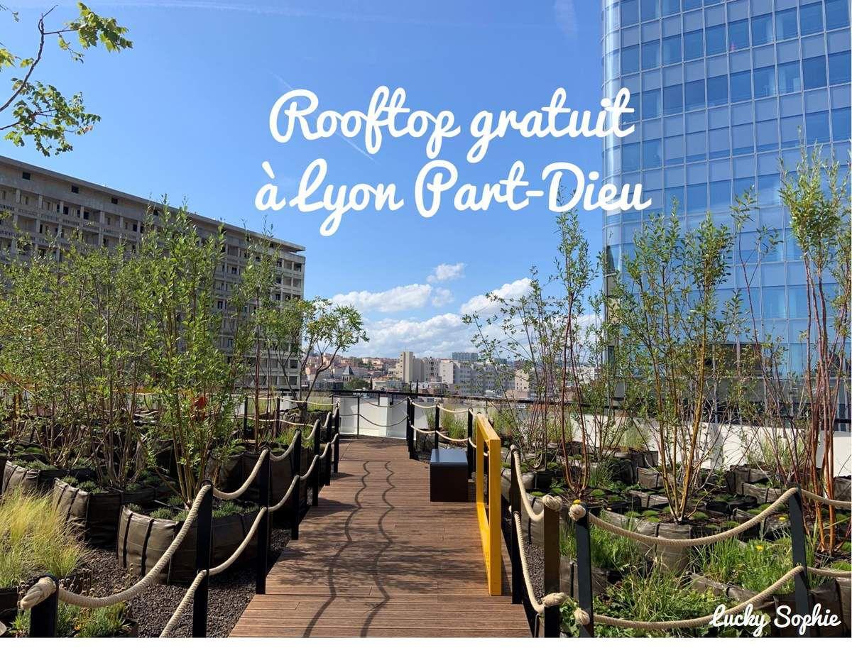 Jardin sur le toit du parking des Halles de Lyon