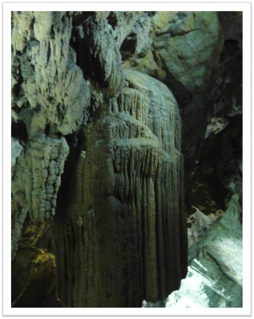 Les stalactites méduses