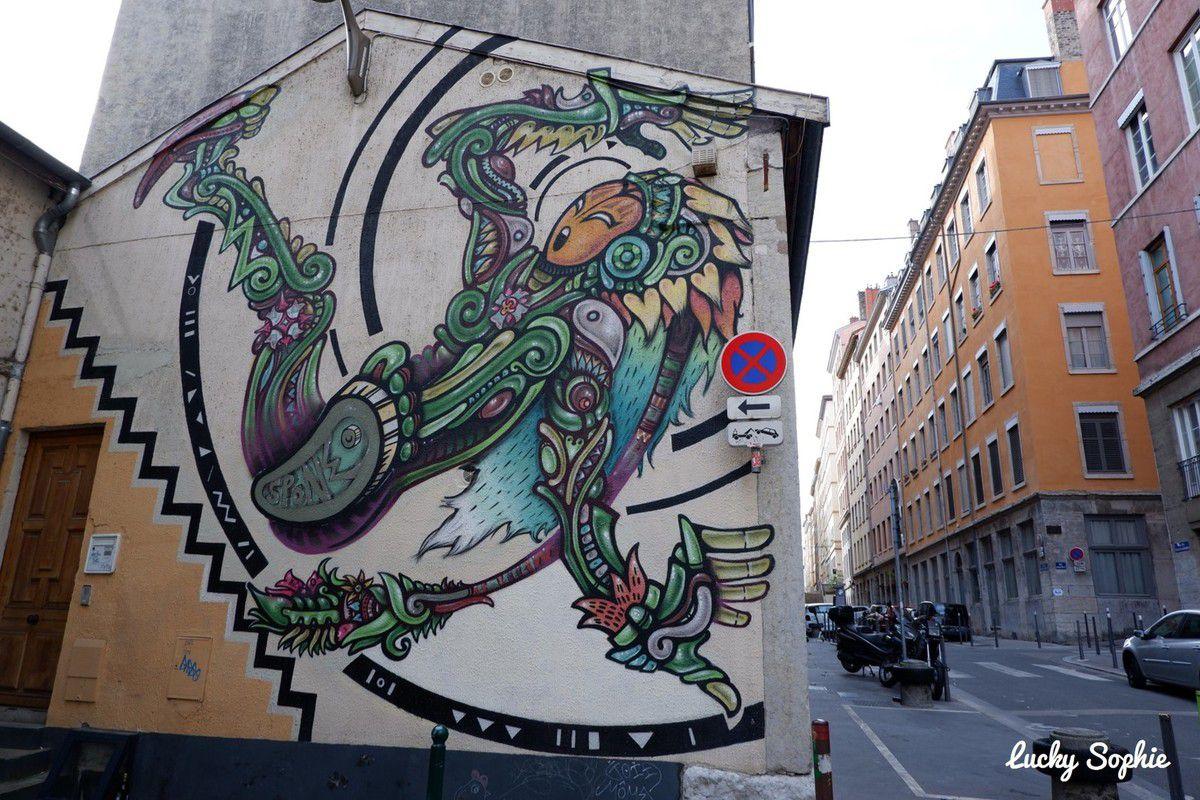 Balade street art à Lyon presqu'île
