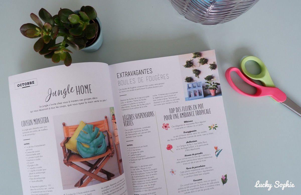 Le grand livre du DIY facile à offrir : une année pour créer !