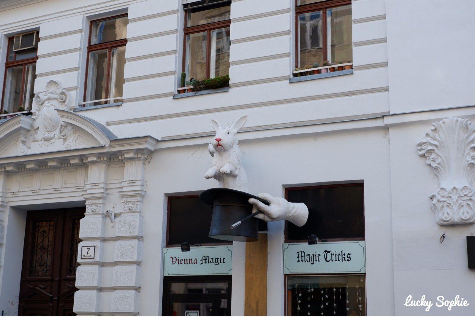 Je ne m'attendais pas à être tant émerveillée par Vienne, à chaque coin de rue !