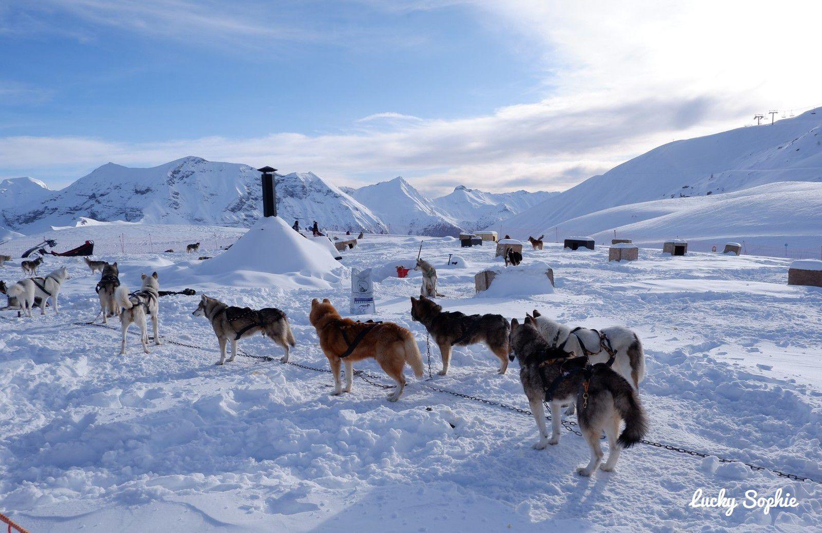 Ski et activités neige en famille à Orcières Merlette