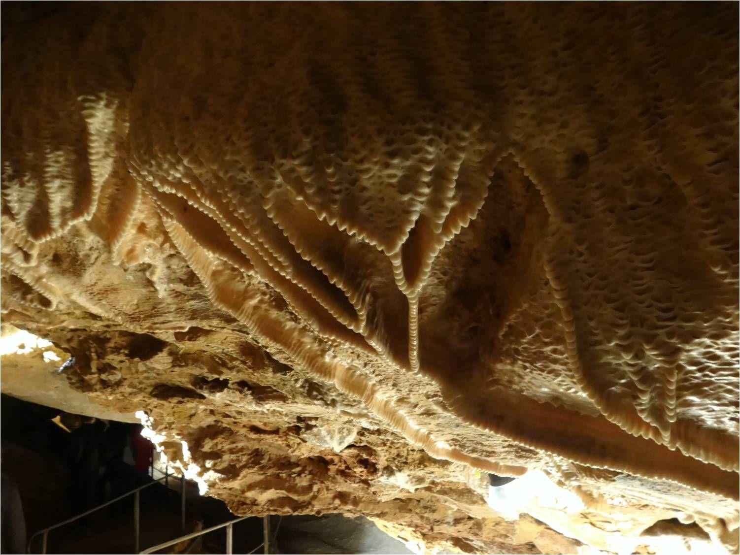 Balade sur le site préhistorique des Grottes d'Azé