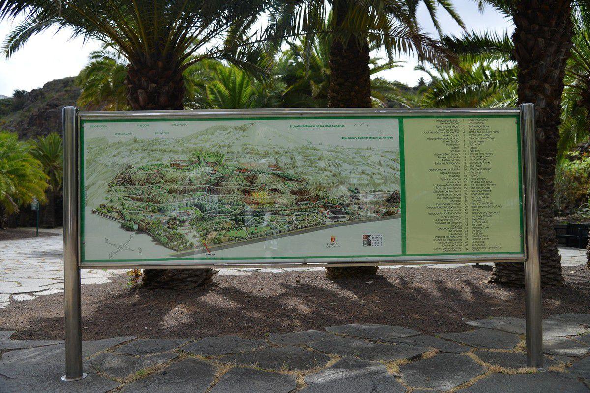 Grande Canarie 2017 : jardin botanico canario Viera y Clavijo ...
