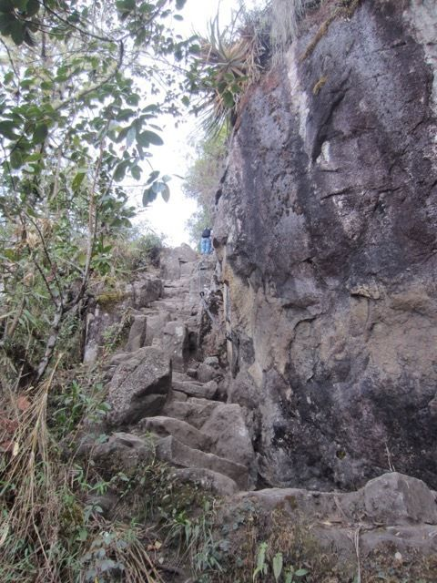 la montee de Huaynapicchu