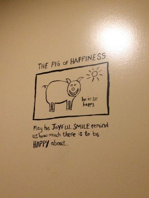 le rayon de soleil de la journee : le pig of happiness !