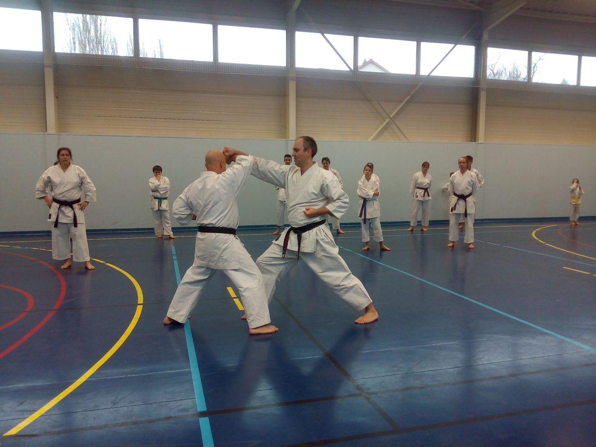 Techniques d'atemi jutsu obligatoires au passage de grade